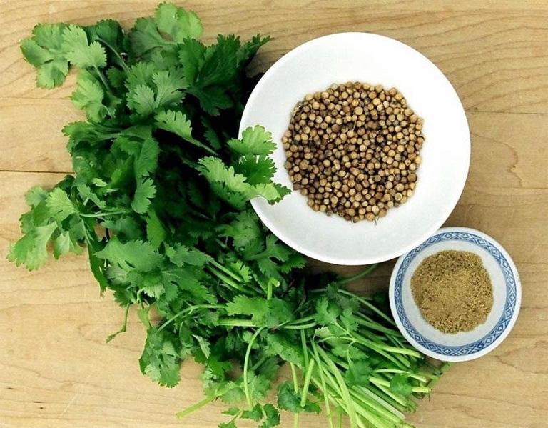 Cây rau mùi và hạt rau mùi