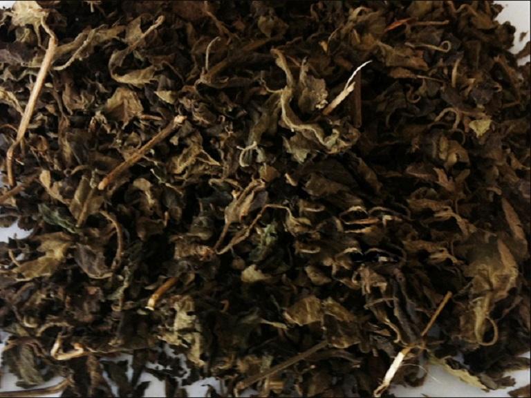 Vị thuốc hoắc hương dạng khô