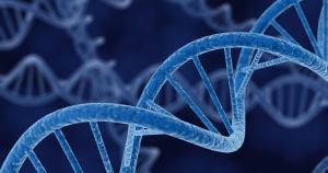Viêm da cơ địa có di truyền không?