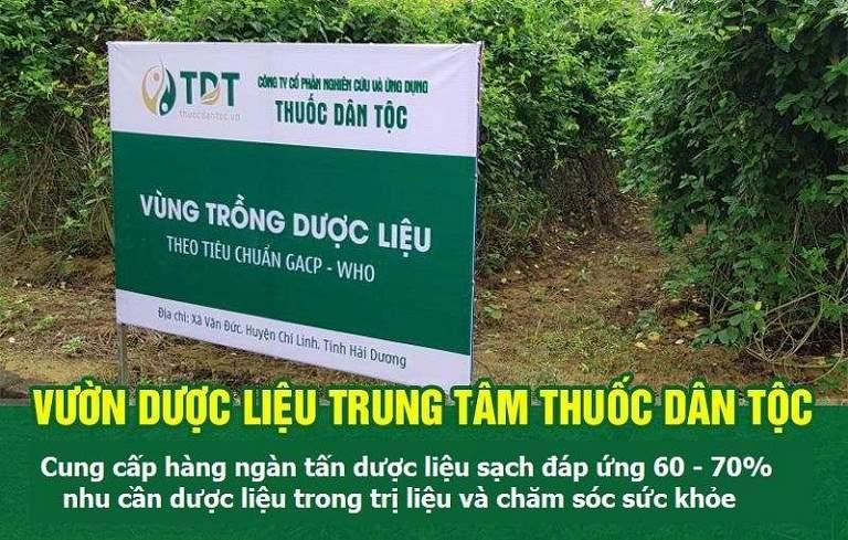 Vườn dược liệu Trung tâm Thuốc dân tộc tại Hải Dương