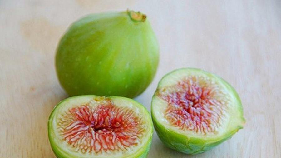 Bệnh trĩ ngoại nên ăn quả sung