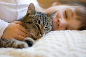 Tiếp xúc với lông thú vật có thể làm bé bị mắc bệnh viêm da cơ địa