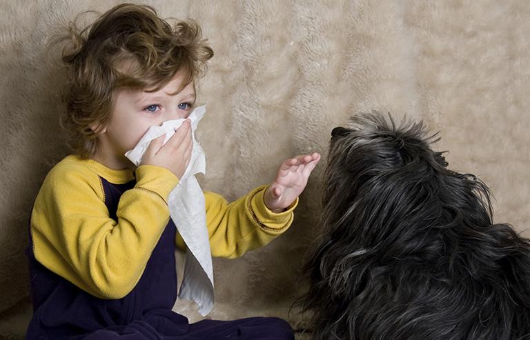 chăm sóc viêm mũi dị ứng tại nhà