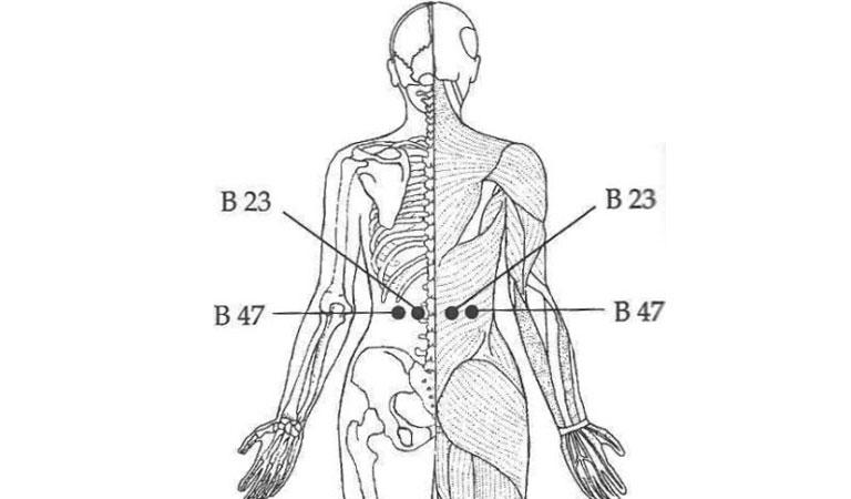bấm huyệt chữa rối loạn cương dương ở thắt lưng