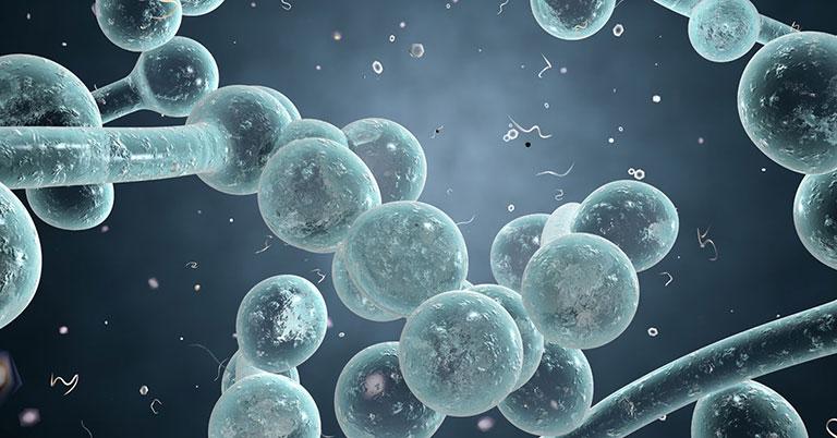 bệnh nhiễm nấm Candida