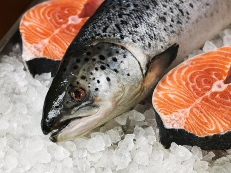 Cá hồi có tác dụng chống lại bệnh chàm sữa