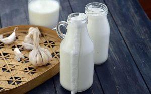 chữa đau dây thần kinh tọa bằng sữa tỏi