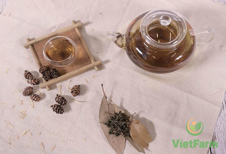 Sử dụng diệp hạ châu mang đến nhiều công dụng cho sức khỏe