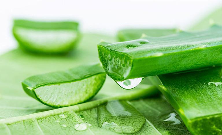 Tinh chất từ gel nha đam có thể làm giảm mẩn ngứa ở vùng thắt lưng