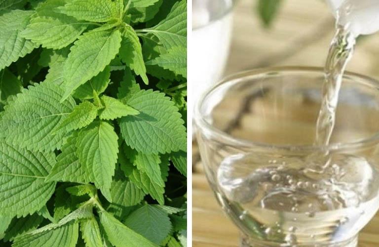 Rượu kinh giới có tác dụng giải độc, trừ phong, chữa mề đay