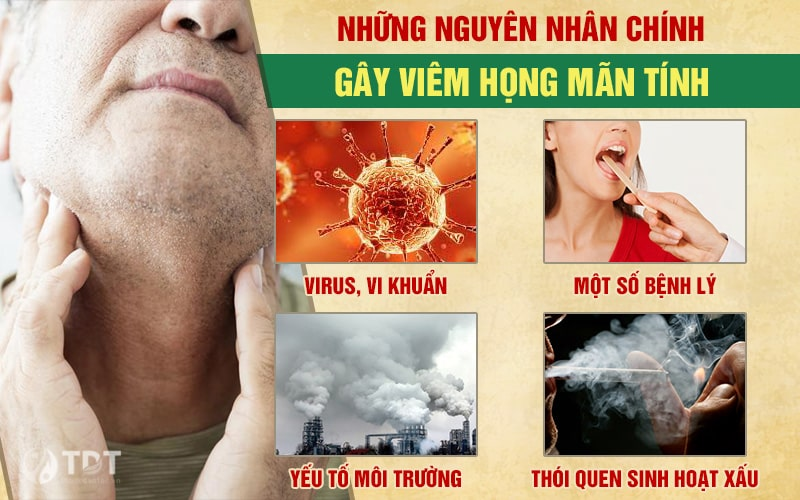 Nguyên nhân gây viêm họng mãn tính