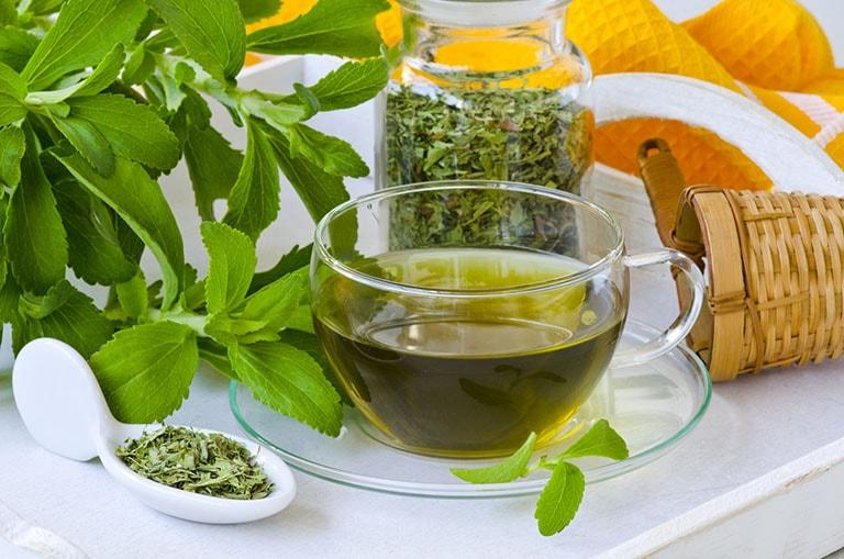 Bài thuốc chữa bệnh từ cây thông đất