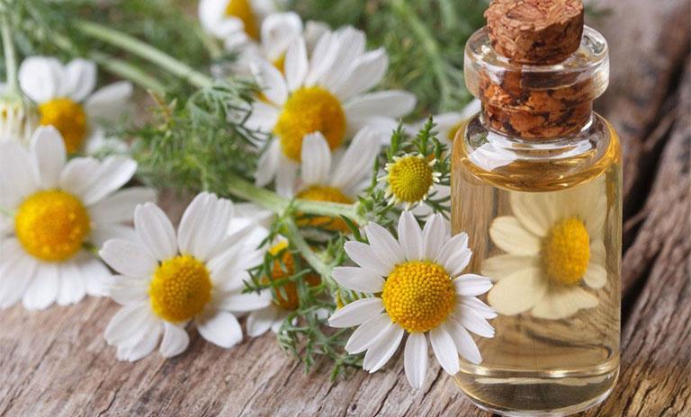 cách chữa bệnh chốc mép nhanh nhất bằng tinh dầu hoa cúc