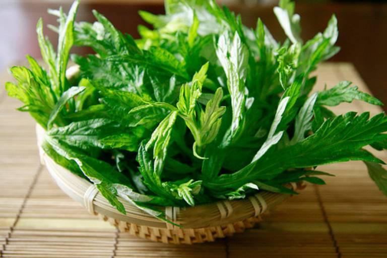 Ngải cứu là cây thuốc nam đa dụng có thể hỗ trợ chữa các bệnh phụ khoa tốt