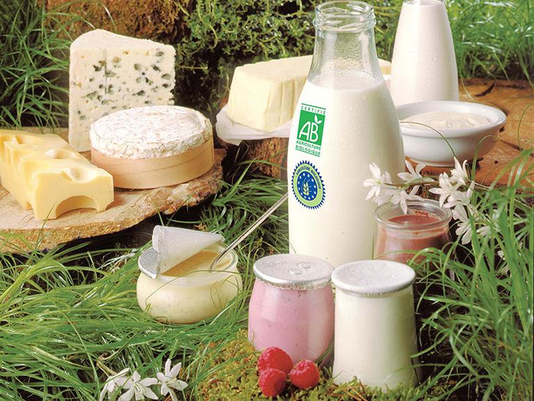 Hạn chế sử dụng sữa và các sản phẩm từ sữa