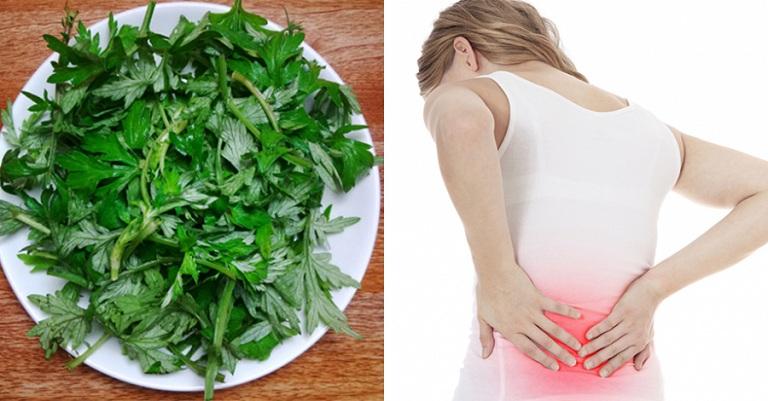 Thuốc giảm đau lưng hiệu quả bằng ngải cứu