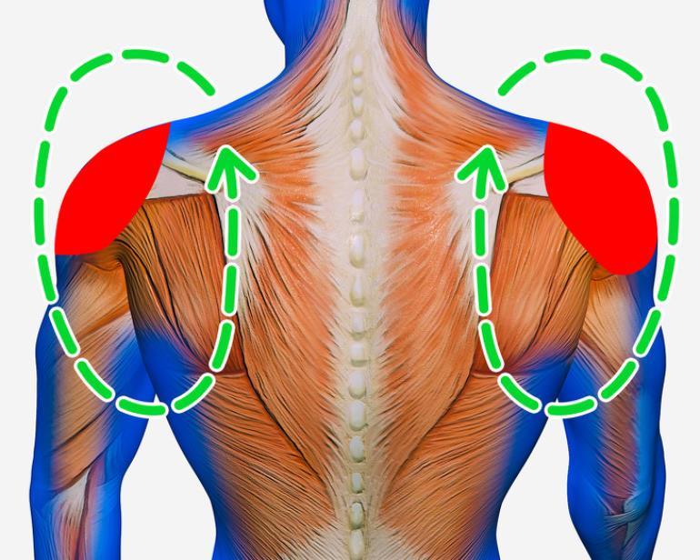 bài tập chữa đau vai gáy tư thế xoay vai