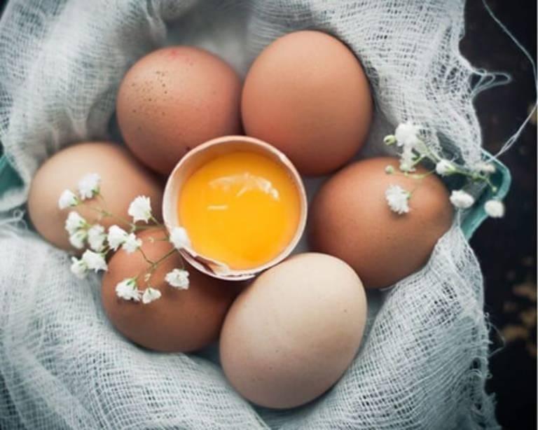 Trứng là một thực phẩm giàu dinh dưỡng phù hợp với người bệnh gút