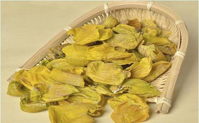 Da vàng mề gà thường được sử dụng trong các bài thuốc điều trị chứng tiểu rắt