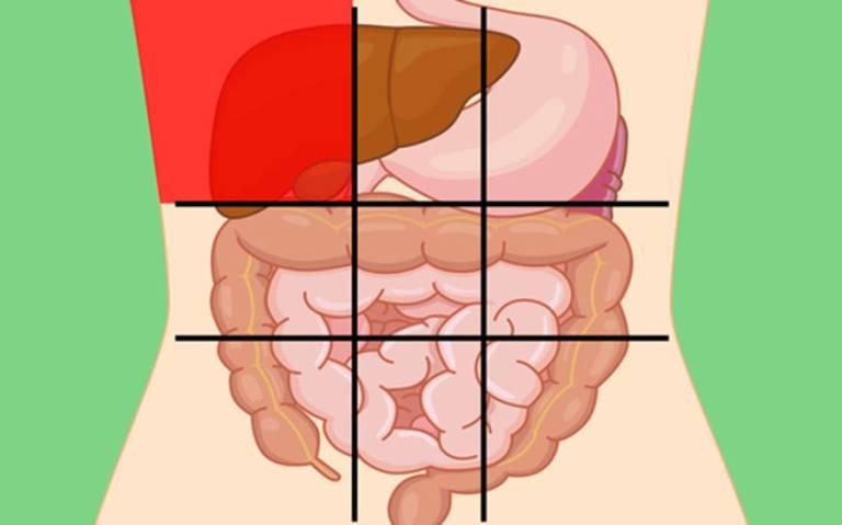 Bụng trên bên phải là vị trí của gan và mật