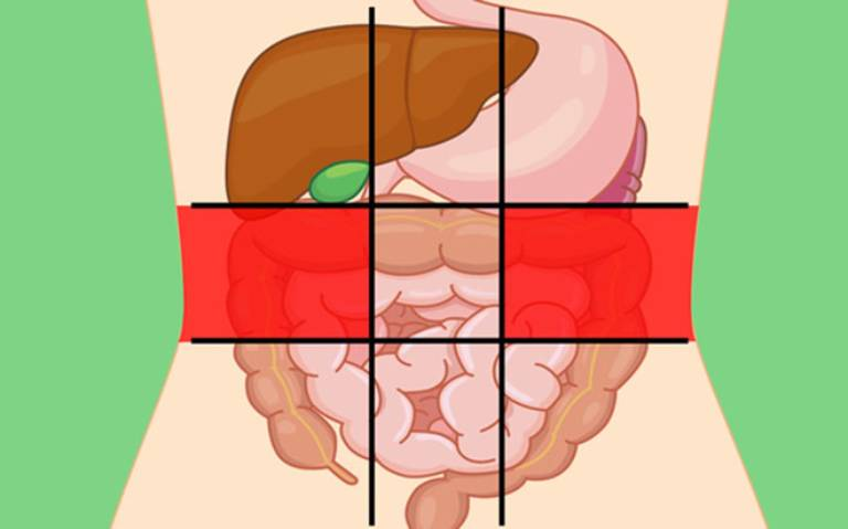 Hình ảnh vị trí đau bụng ở hai bên trái phải của phần bụng giữa