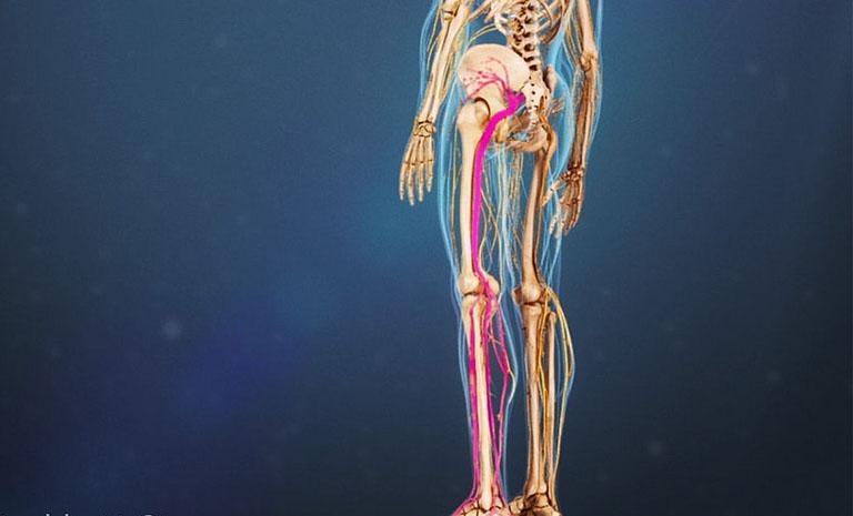 đau lưng mỏi gối tiểu nhiều