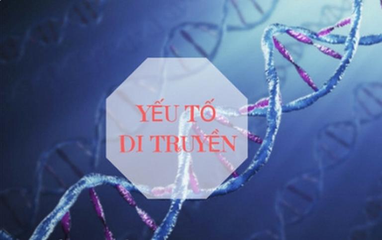 Bạch biến là căn bệnh có tính chất di truyền