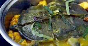 Thịt ba ba là món ăn bổ dưỡng nhưng lại dễ gây dị ứng, ngộ độc