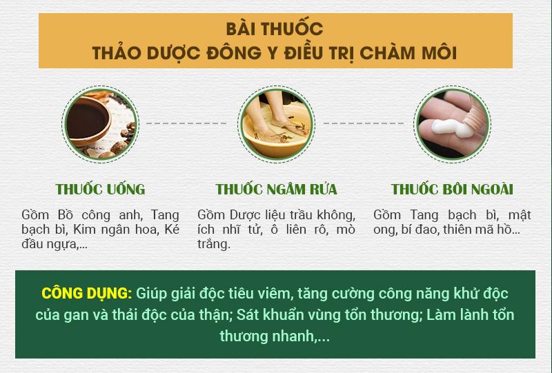Bài thuốc Thảo dược Đông y điều trị chàm môi
