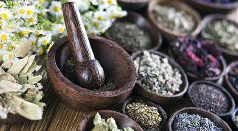 Các bài thuốc Đông y giúp điều trị nguyên căn gây bệnh, mang lại hiệu quả lâu dài