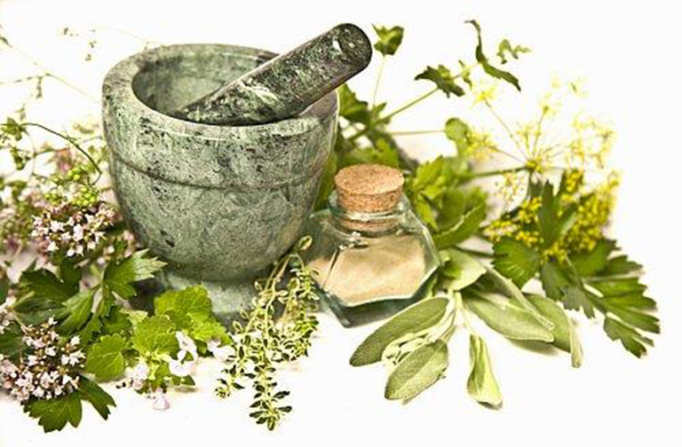 Sử dụng các loại thảo dược tự nhiên để điều trị bệnh tiểu đường an toàn và hiệu quả