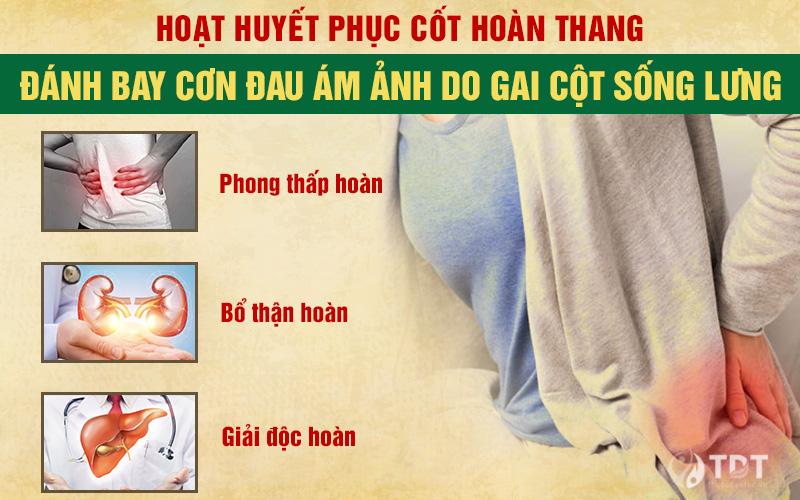 Bài thuốc nam hoạt huyết phục cốt hoàn thang chữa gai cột sống lưng