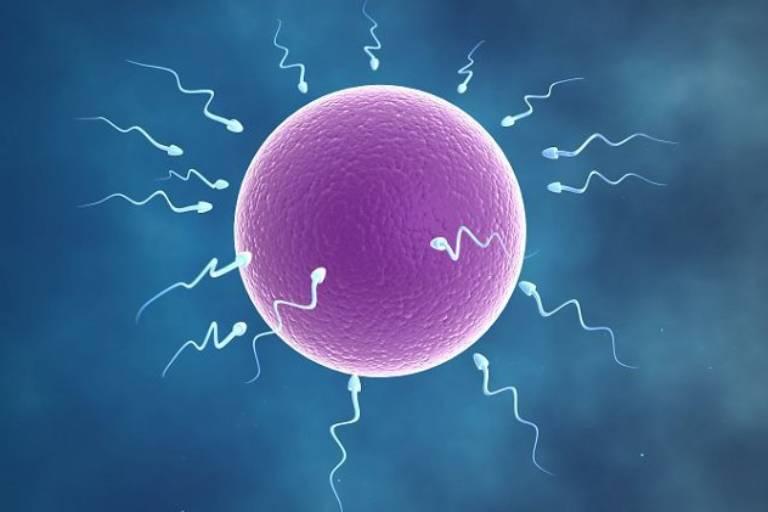 Tinh trùng ít là hiện tượng lượng tinh trùng có trong tinh dịch khi xuất ra ở thời điểm cực khoái thấp hơn bình thường