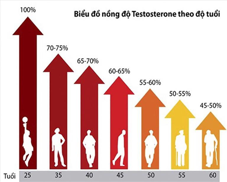 Biểu đồ nồng độ testosterone bình thường theo độ tuổi ở nam giới