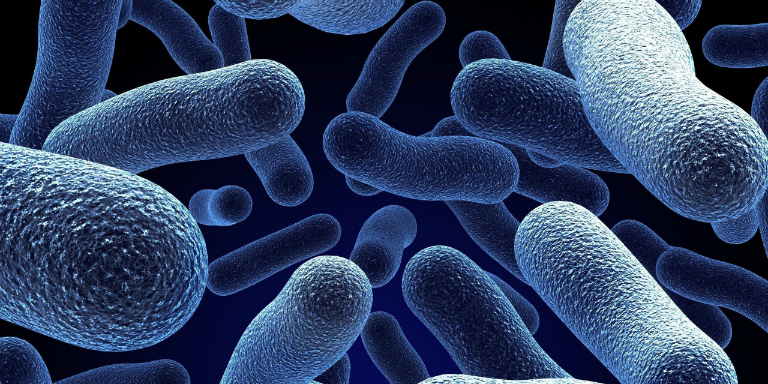 Men vi sinh probiotic là những vi sinh vật có lợi ở đường ruột, giúp cho quá trình tiêu hóa, hấp thụ dinh dưỡng diễn ra tốt hơn.