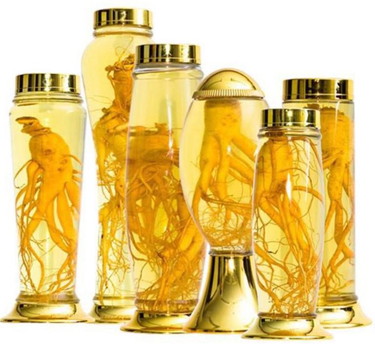 Nhân sâm còn được sử dụng để ngâm rượu có tác dụng làm tăng sinh lý nam