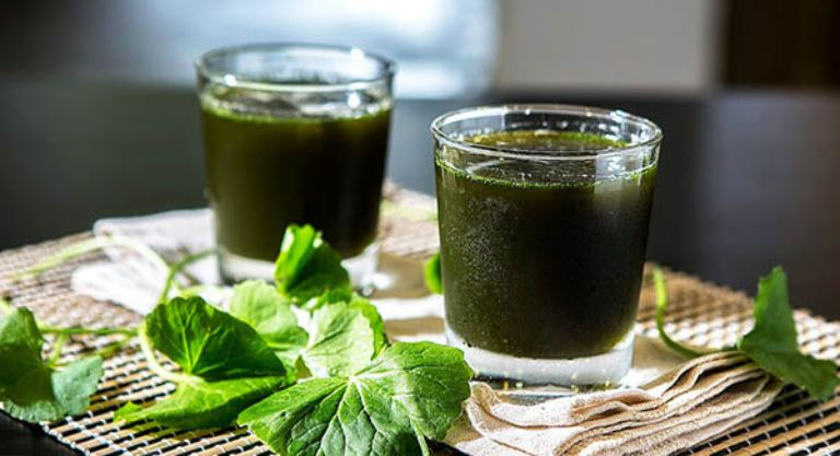 Các thực phẩm có tác dụng thanh nhiệt, giải độc, lợi tiểu rất tốt cho người gặp các vấn đề về đường tiểu