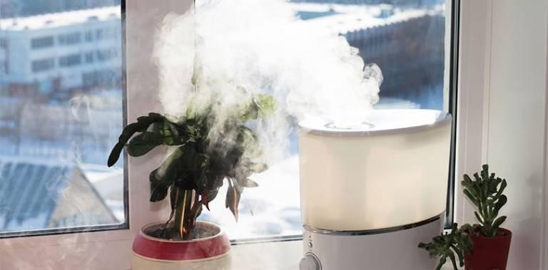 Luôn giữ cho độ ẩm trong không khí ở mức cân bằng để tránh tổn thương mũi và các xoang