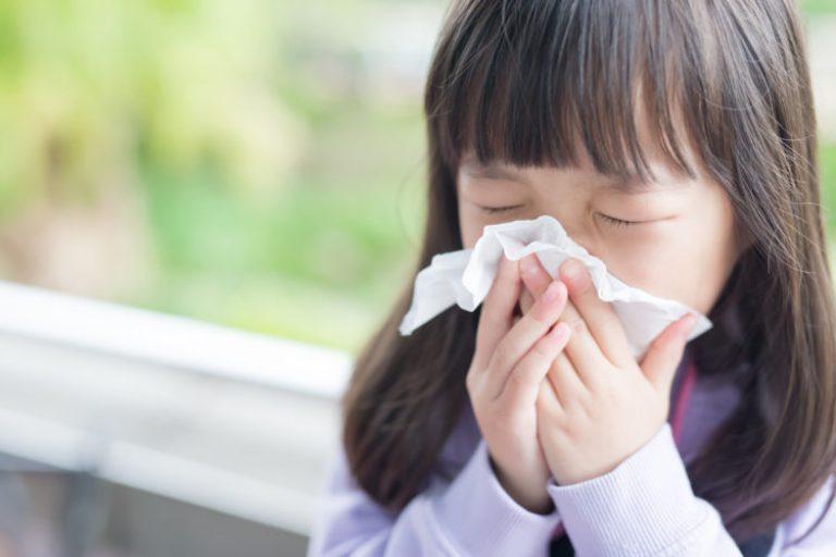 Bạch thau có tác dụng hỗ trợ điều trị ho ở trẻ nhỏ