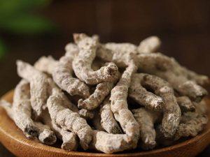 Bạch cương tằm là dược liệu phổ biến trong Đông y có nguồn gốc từ con tằm ăn lá dâu
