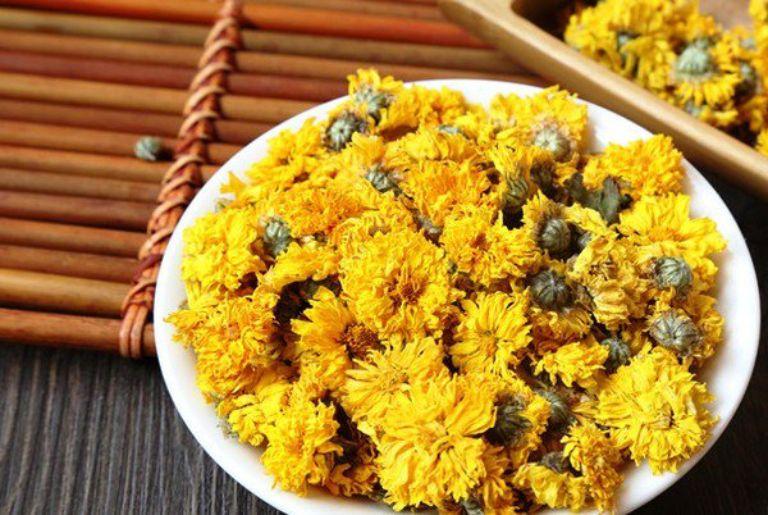 Hoa cúc vàng hay hoàng cúc là vị thuốc nam thường được dùng để chữa bệnh