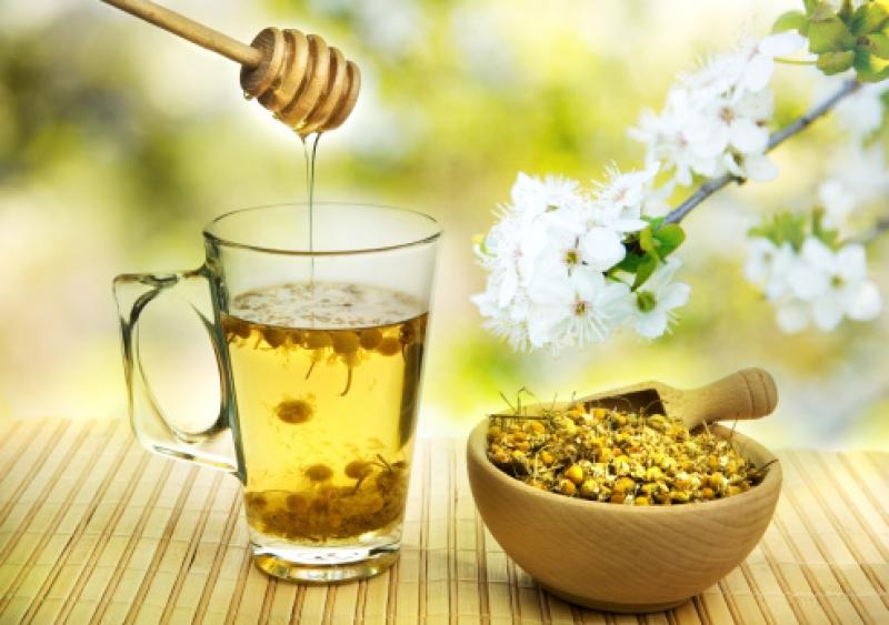 trà hoa cúc mật ong chữa trào ngược dạ dày