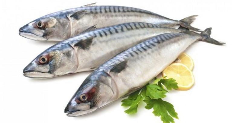 Kinh nguyệt không đều nên ăn cá béo