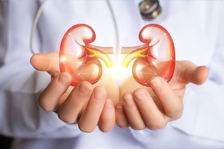 Nhận biết sớm các triệu chứng bệnh thận yếu ở nam giới sẽ giúp bạn bảo vệ cơ quan này tốt hơn
