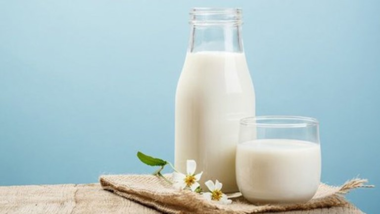 Sữa ngăn ngừa rụng tóc hiệu quả và kích thích mọc tóc mới