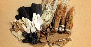 Ngày càng nhiều người tìm đến các cây thuốc Nam chữa yếu sinh lý