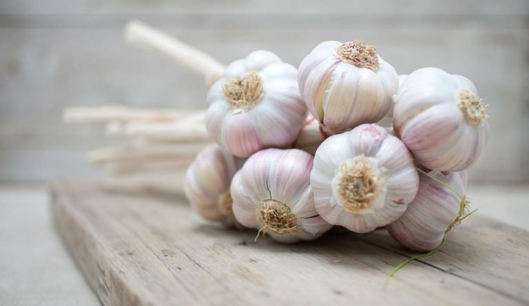 Tỏi có tác dụng giảm cholesterol trong máu, điều trị đầy bụng, sát khuẩn, sinh tinh, ngăn ngừa ung thư,...
