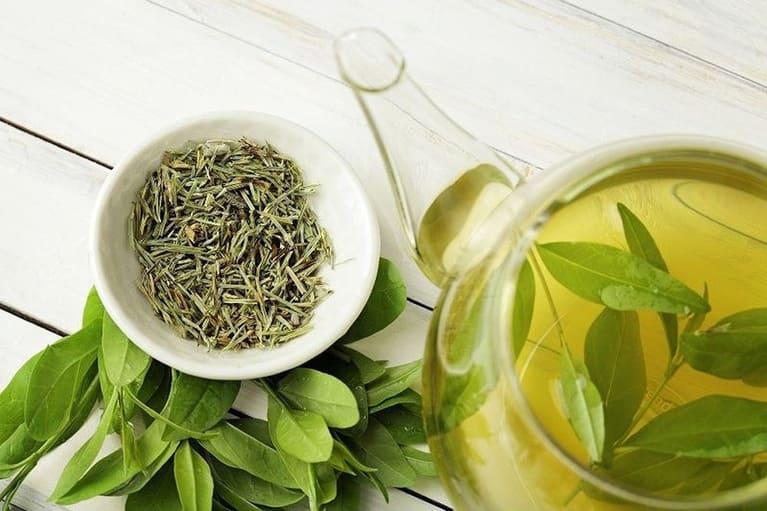 Trà xanh có tác dụng kháng viêm và giảm những cơn đau dạ dày