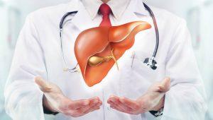 cây thuốc nam trị bệnh gan