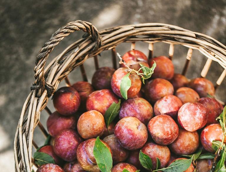 nước mận chữa táo bón